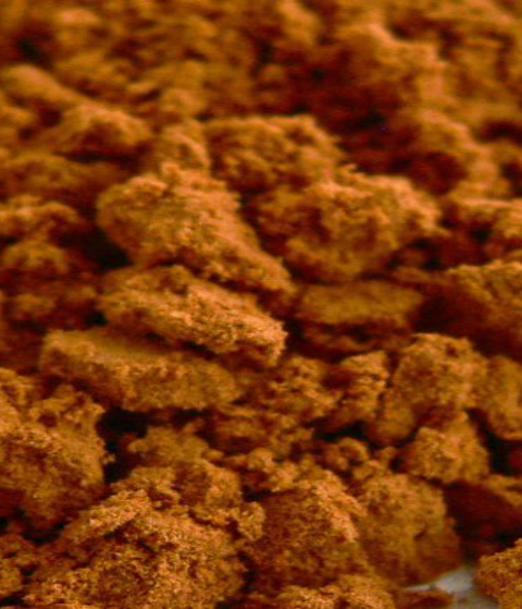 traubenkernmehl-beitrag