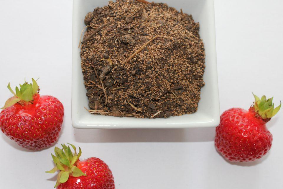 Erdbeertrester